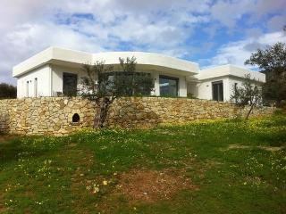 The Olive Grove (in a nature reserve) - Koroni vacation rentals
