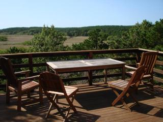 Abutting River & Nat'l Seashore Privacy,Internet - South Wellfleet vacation rentals
