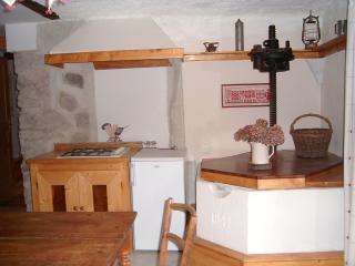 Gîte Le Pressoir - Thones vacation rentals