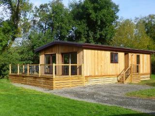 Ash Lodge - Clun vacation rentals