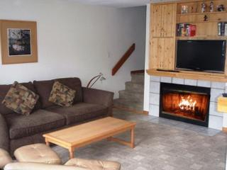 Forest Trails 24 - Private garage located in upper village includes free wifi - Whistler vacation rentals