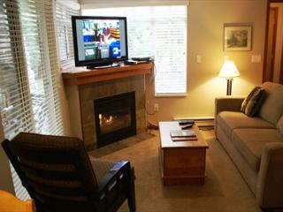 Stoney Creek Sunpath 8 - Quiet ground floor condo - Whistler vacation rentals