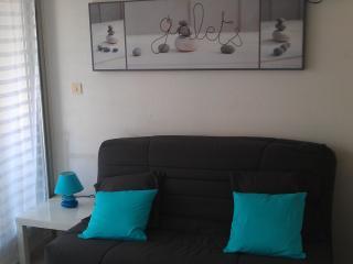 Appartement Bord de plage Hossegor le Point d'Or - Hossegor vacation rentals