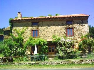 Forest edge gite - Brioude vacation rentals
