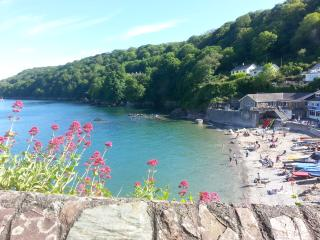 CLOUD 9 Spacious 2 bedroom apartment w/sea views. - Cawsand vacation rentals