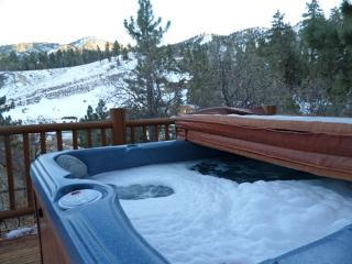 #04 Bearadise - Big Bear Lake vacation rentals