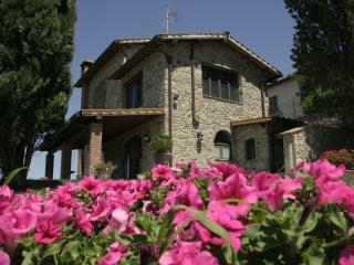 Beautiful Tuscan 3 bedroom barnhouse with picturesque garden and deck, located in the heart of Chianti Classico - Greve in Chianti vacation rentals