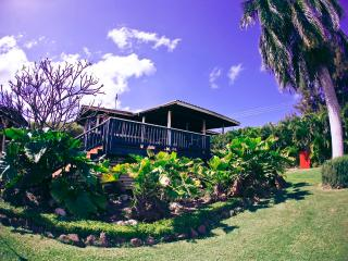 Bamboo House - Waialua vacation rentals