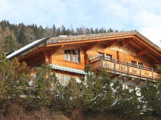 Chalet Arabella - Muhlbach am Hochkonig vacation rentals