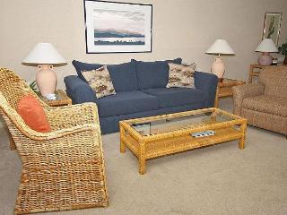 2 Bedroom 2 Bathroom Resort View Flat  at Shorewood Villas - Hilton Head vacation rentals