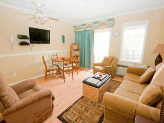 Ocean Dunes Villa 318 -  1 Bedroom 1 Bathroom Oceanfront Flat Hilton Head, SC - Hilton Head vacation rentals