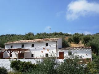 Casa Mariposa - Las Casillas vacation rentals