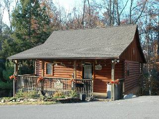 Charming Pet-Friendly 1 BR Studio Pigeon Forge Resort Cabin Near Dollywood - Tennessee vacation rentals