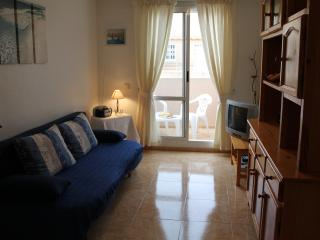 Apartment in Costa Blanca - Torrevieja vacation rentals