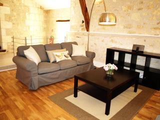Maison des Chouettes - La Celle-Guenand vacation rentals