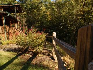 Hiker's Rest - Topton vacation rentals