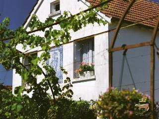 The Garden Lodge - Boiscommun vacation rentals