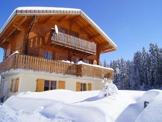Chalet Jura - Les Rousses vacation rentals