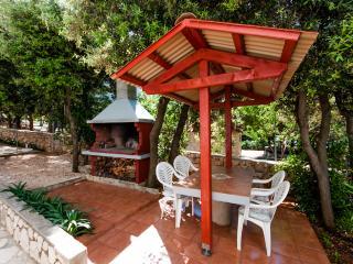 Apartments Anđelika - 25261-A3 - Mandre vacation rentals