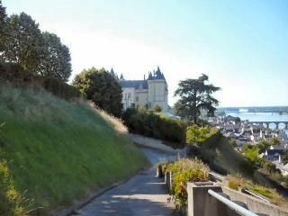 Le Castle - Saumur vacation rentals