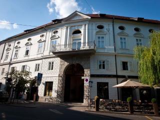 Apartment Menini - Ljubljana vacation rentals