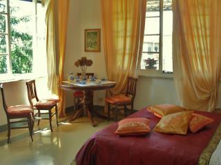 VILLA TERRACE,NEAR LEANING TOWER - Pisa vacation rentals