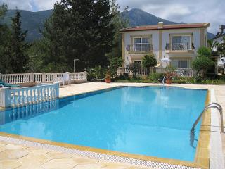 House with pine grove just behind - Ozankoy vacation rentals