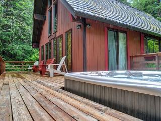 Hikers Paradise on 5 acres-Hot Tub- Horse Shoe Pit - Rhododendron vacation rentals