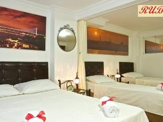 Two flats on the best street of Cihangir - Istanbul vacation rentals