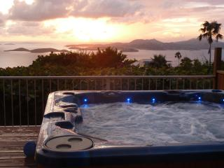 Spectacular Ocean Views, Sunsets, Heated Pool, Spa - Saint John vacation rentals