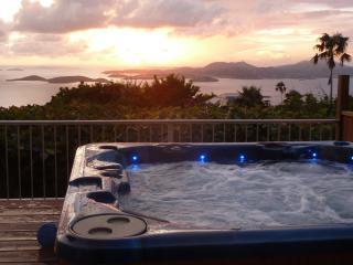 Plumeria: Great Ocean Views, Sunsets, Heated Pool, - Saint John vacation rentals