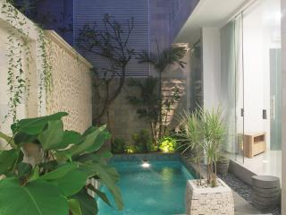 Cozy brand new 2 bedroom Kuta - Seminyak vacation rentals