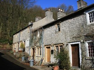 Badger Cottage - Litton vacation rentals