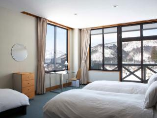 Large room in boutique lodge - Nozawaonsen-mura vacation rentals