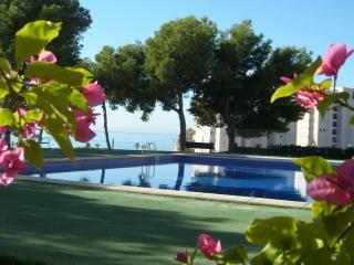 Urbanización Sainvi, Villajoyosa, Benidorm. - Benidorm vacation rentals