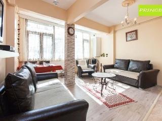 PRINCESS - Istanbul vacation rentals