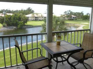 Condo in Turtle Lake in Beautiful Naples Florida - Naples vacation rentals