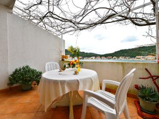 Apartments Ratko - 53931-A2 - Lastovo vacation rentals