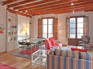 Next To Cathedral&Paseo Maritimo - Palma de Mallorca vacation rentals
