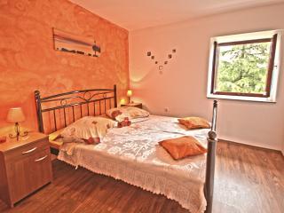 Villa Volta - V2271-K1 - Nedescina vacation rentals