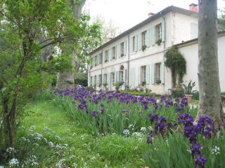 Domaine le Taleur - Avignon vacation rentals
