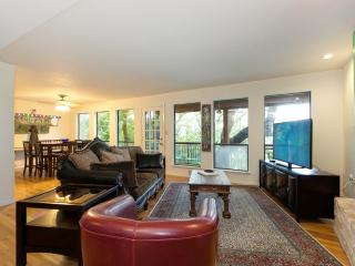 Gorgeous Home By Barton Springs! - Austin vacation rentals