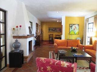 Casa Torita Rosa - Privada Baeza (Parque Juarez) - San Miguel de Allende vacation rentals