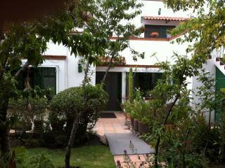 Los Frailes Winter Rental -  Quite & Lush Gardens - San Miguel de Allende vacation rentals