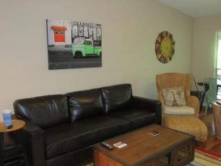 2 Bedroom Condo Across The Street From Zilker Park - Austin vacation rentals