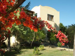 Villa Batiuska, pool, reachable, fully equipped - Anacapri vacation rentals
