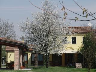 Particolari del Brenta - Elisa - Oriago di Mira vacation rentals