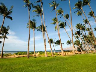 Hale Kai O'Kihei 2 Bedroom 216 - Kihei vacation rentals