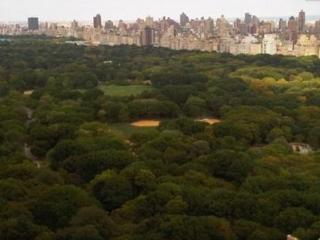CENTRAL PARK ADJACENT LUXURY CITY VIEWS SLEEPS 1-4 - New York City vacation rentals