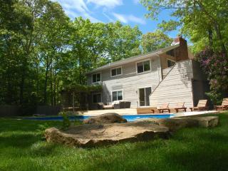 East Hampton Summer Rental - East Hampton vacation rentals
